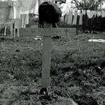Grave of Rfn. Pickavance 6 Commando